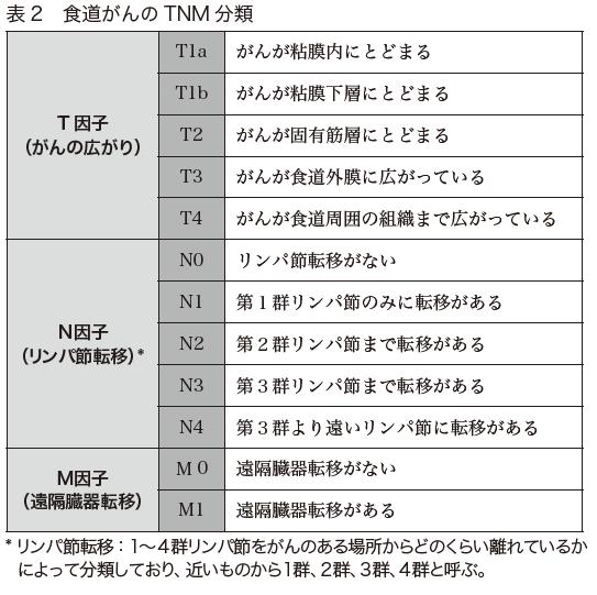 表2 食道がんのTNM分類