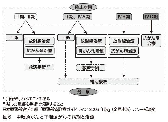 図6 中咽頭がんと下咽頭がんの病期と治療 日本頭頸部癌学会編『頭頸部癌診療ガイドライン2009年版』(金原出版)より一部改変