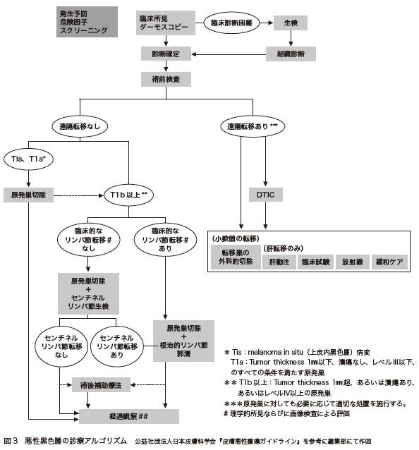 図3 悪性黒色腫の診療アルゴリズム 公益社団法人日本皮膚科学会『皮膚悪性腫瘍ガイドライン』を参考に編集部にて作図