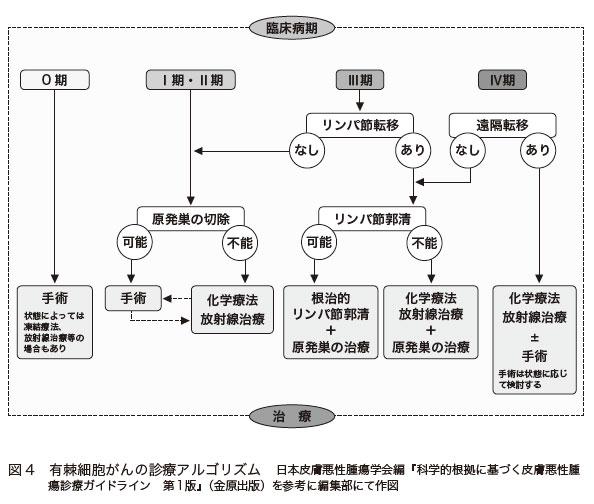 図4 有棘細胞がんの診療アルゴリズム 日本皮膚悪性腫瘍学会編『科学的根拠に基づく皮膚悪性腫瘍診療ガイドライン 第1版』(金原出版)を参考に編集部にて作図