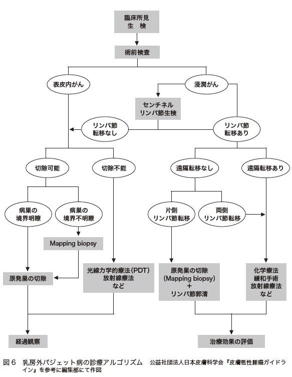 図6 乳房外パジェット病の診療アルゴリズム 公益社団法人日本皮膚科学会『皮膚悪性腫瘍ガイドライン』を参考に編集部にて作図