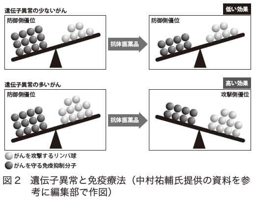 図2 遺伝子異常と免疫療法(中村祐輔氏提供の資料を参考に編集部で作図)