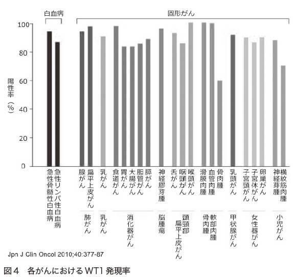 図4 各がんにおけるWT1 発現率