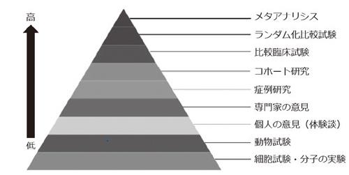 図1 エビデンス(科学的根拠)レベル